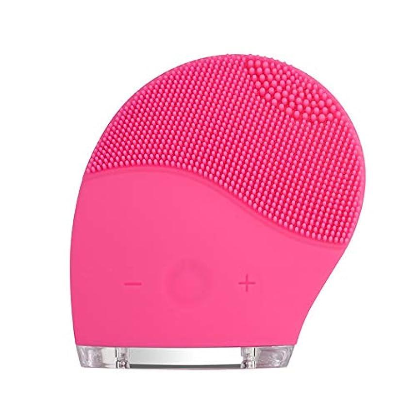 偶然泳ぐ着実にkaixi 2019最新のシリコーンクレンジング楽器洗浄ブラシ電気美容器具毛穴きれいな柔らかい髪振動充電式洗浄アーティファクト
