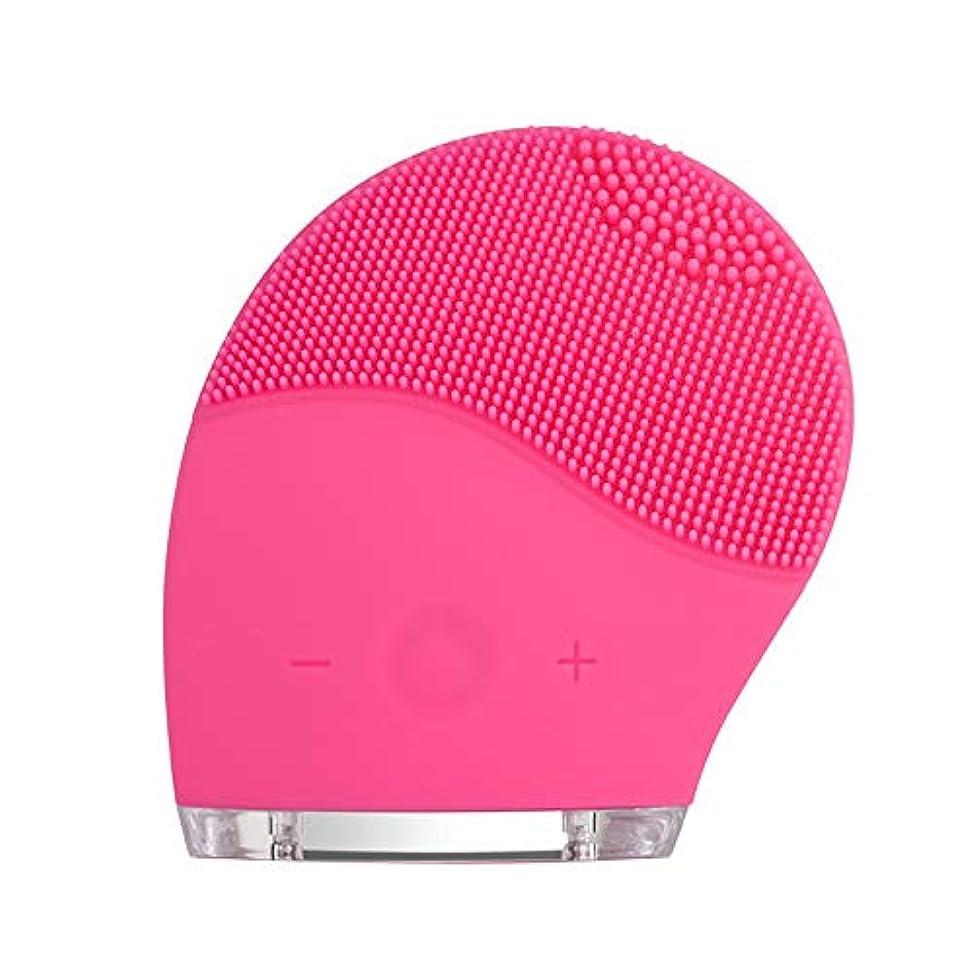 アクセサリー適応的六月kaixi 2019最新のシリコーンクレンジング楽器洗浄ブラシ電気美容器具毛穴きれいな柔らかい髪振動充電式洗浄アーティファクト
