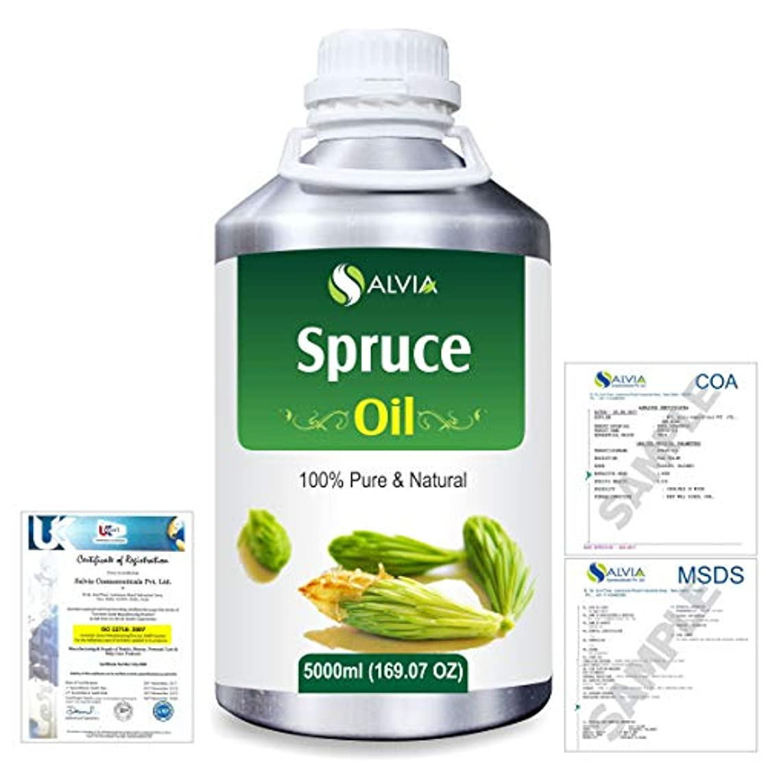 おしゃれじゃないはちみつ収縮Spruce (Tsuga Canadensis) 100% Natural Pure Essential Oil 5000ml/169fl.oz.