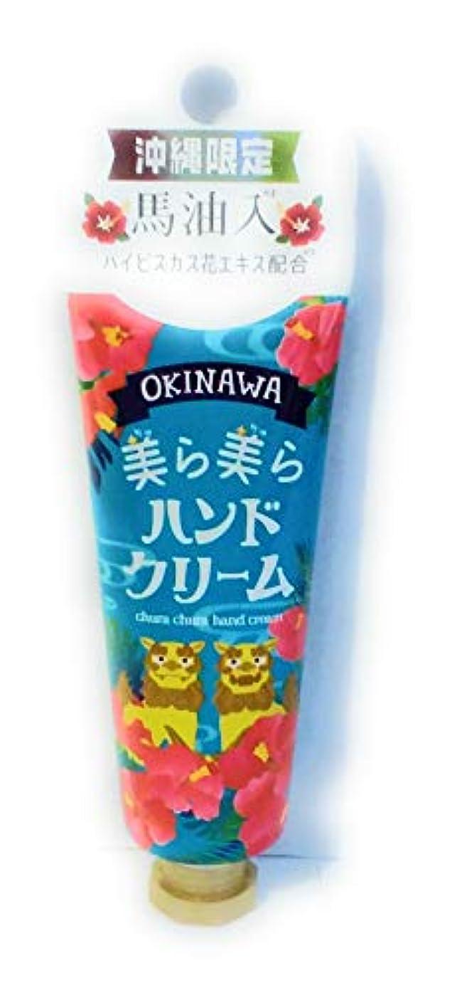 閃光推進力運河OKINAWA美ら美らハンドクリーム(ハイビスカス)