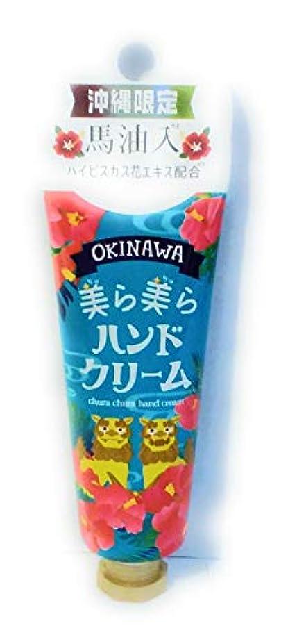 蒸発するプラットフォーム単にOKINAWA美ら美らハンドクリーム(ハイビスカス)