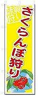のぼり のぼり旗 さくらんぼ狩り (W600×H1800)