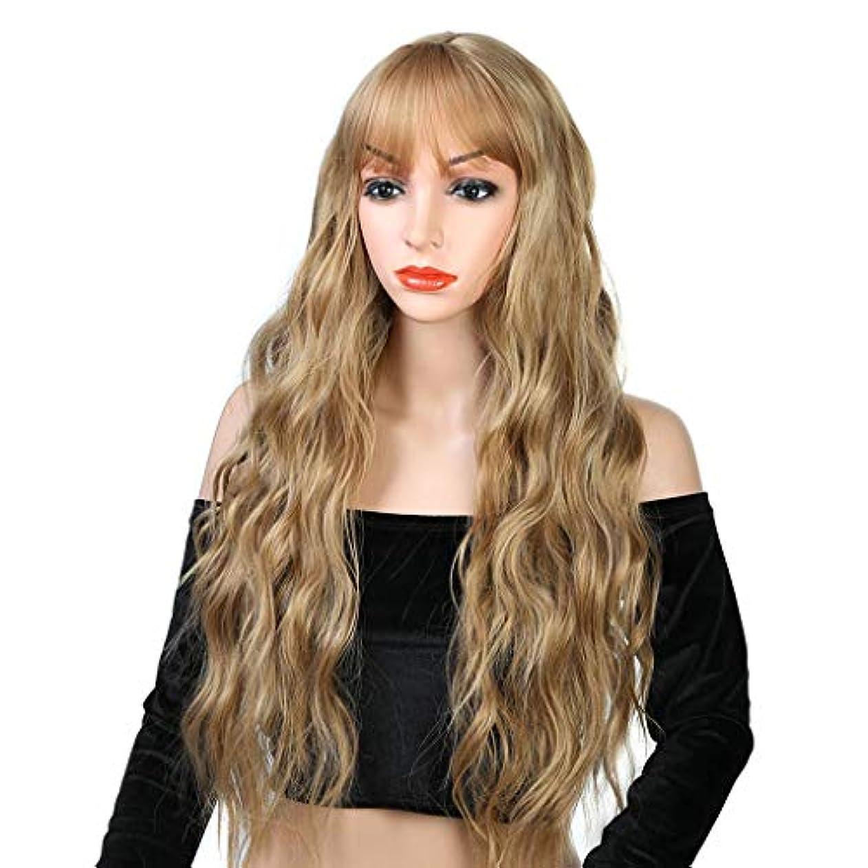 消す現れるティーンエイジャーリザイ ファッションレースかつら、前髪自然波ロングカーリー耐熱合成かつらで女性ストロベリーブロンドオンブルライトブロンドのかつら26インチ