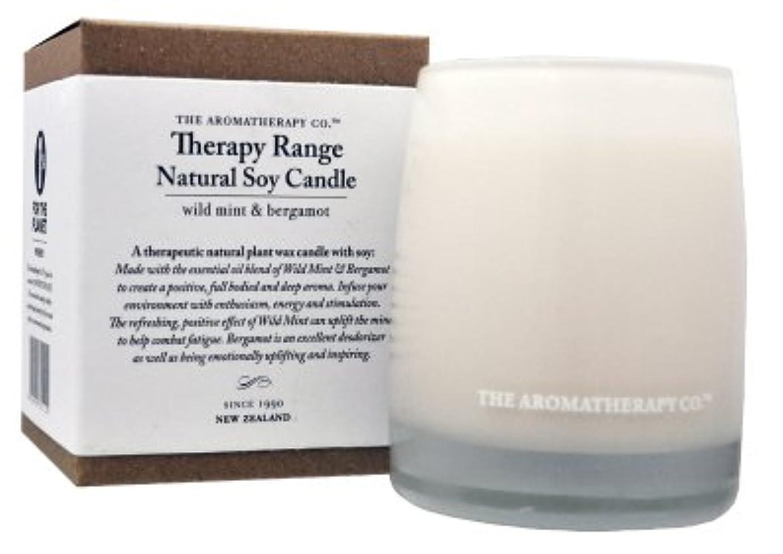 千乳白色窓を洗うアロマセラピーカンパニー Therapy Range セラピーレンジ セラピューティックキャンドル ワイルドミント&ベルガモット