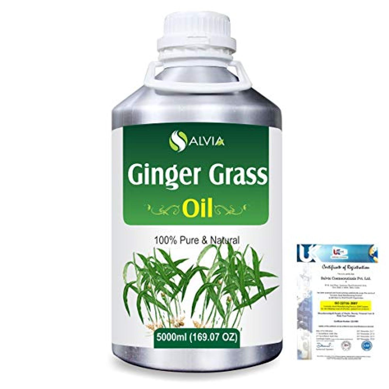 バクテリア悲しむ製造Ginger grass (Cymbopogon martini! var sofia)100% Natural Pure Essential Oil 5000ml/169fl.oz.