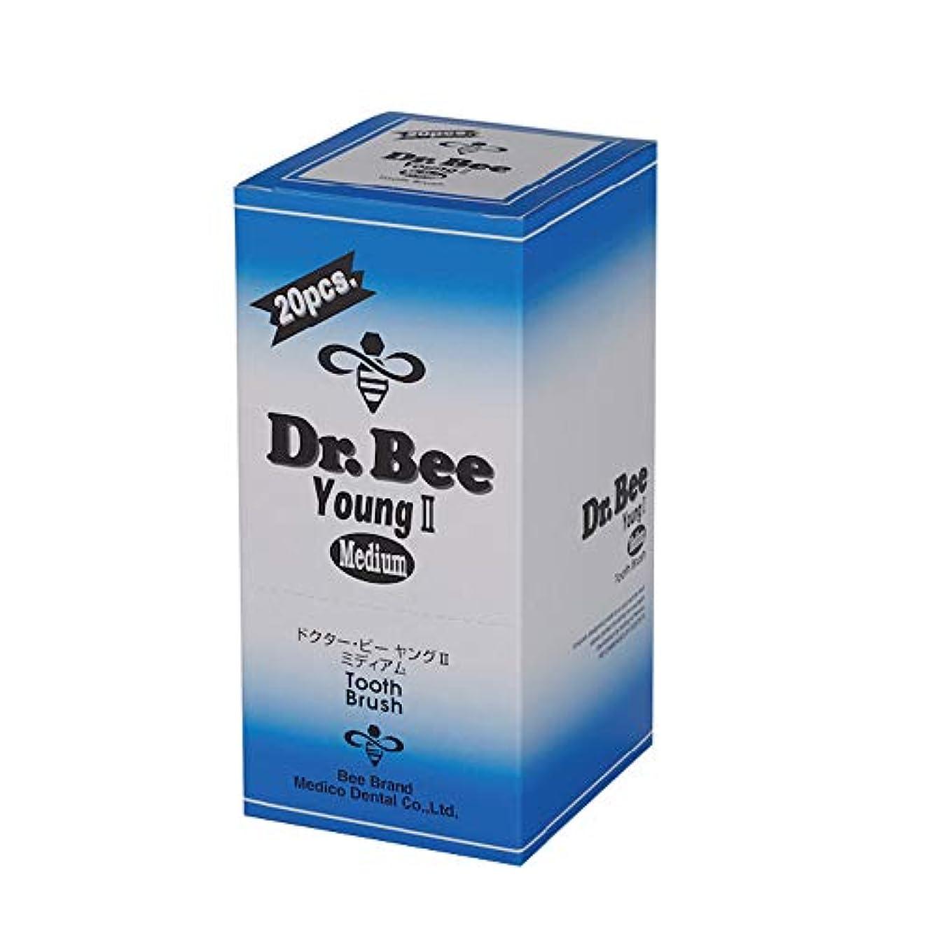 パリティ面矢印Dr.Bee ソフト 20本入り