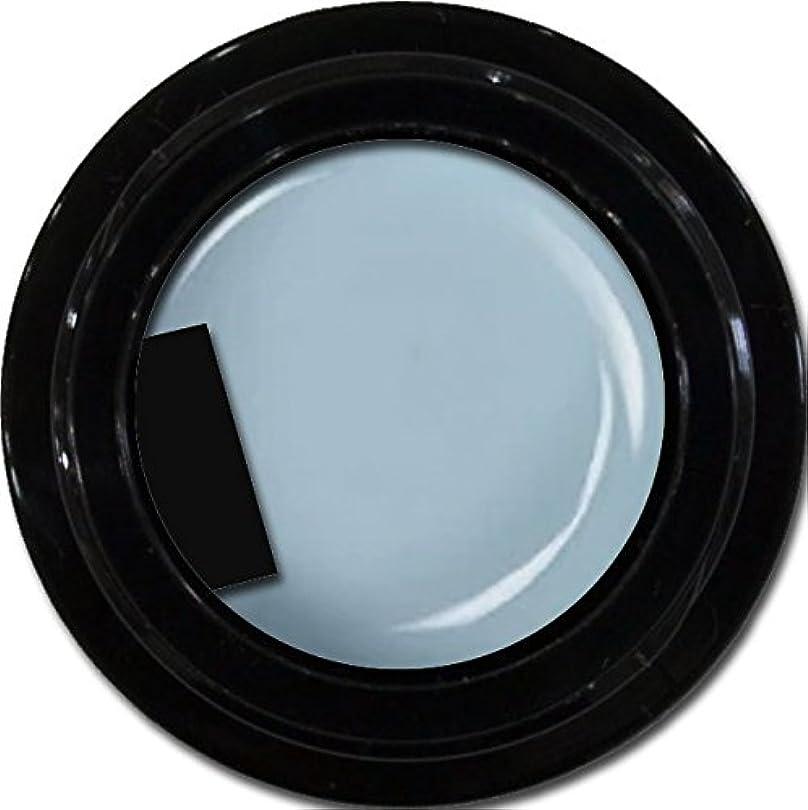 トリッキー単独でマニュアルカラージェル enchant color gel M705 SmokeBlue 3g/ マットカラージェル M705 スモークブルー 3グラム