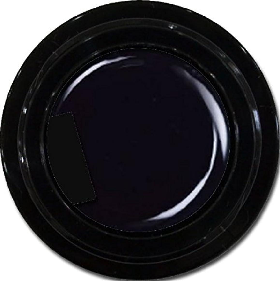 イデオロギー伴う期待するカラージェル enchant color gel M901 Extreme Black 3g/マットカラージェル M901 エクストリームブラック 3グラム