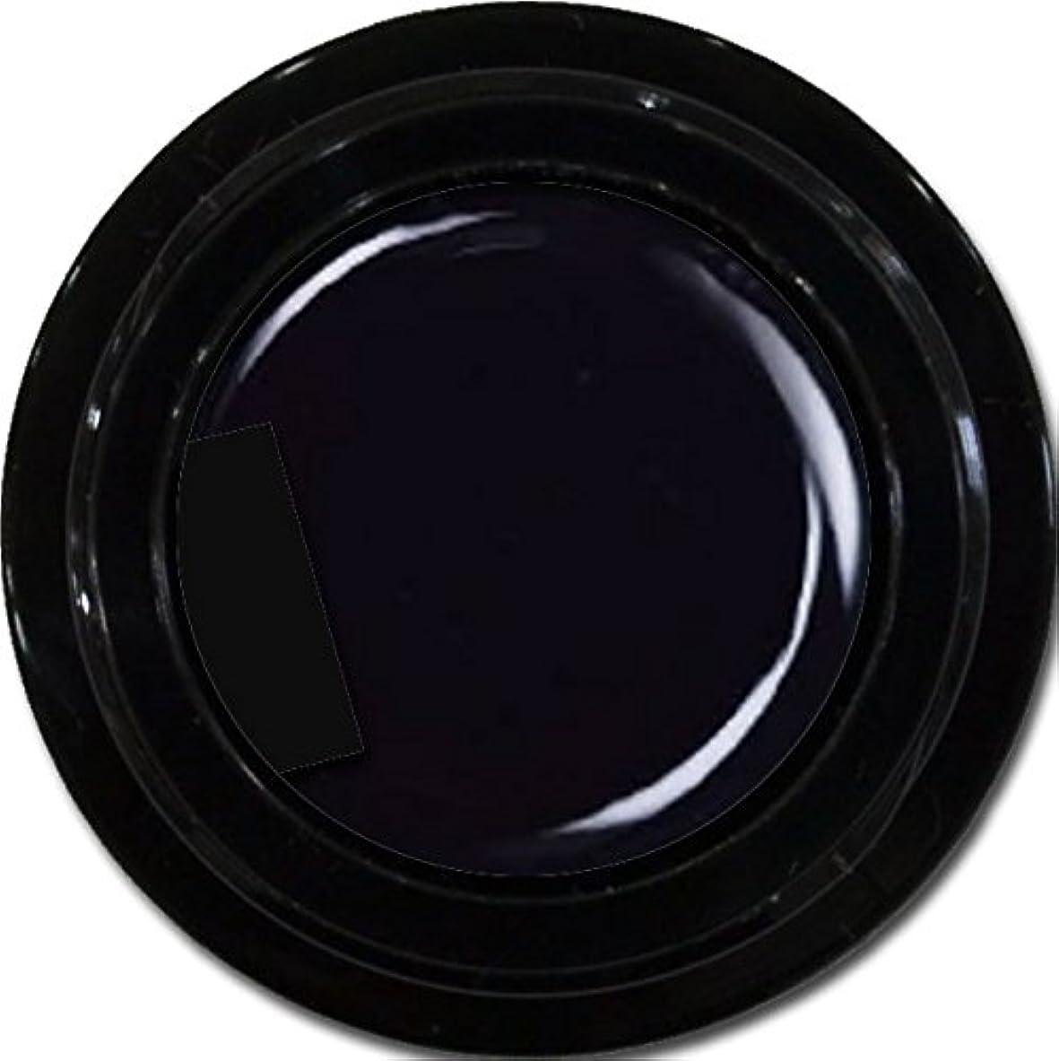 バイバイ拡散する不良品カラージェル enchant color gel M901 Extreme Black 3g/マットカラージェル M901 エクストリームブラック 3グラム
