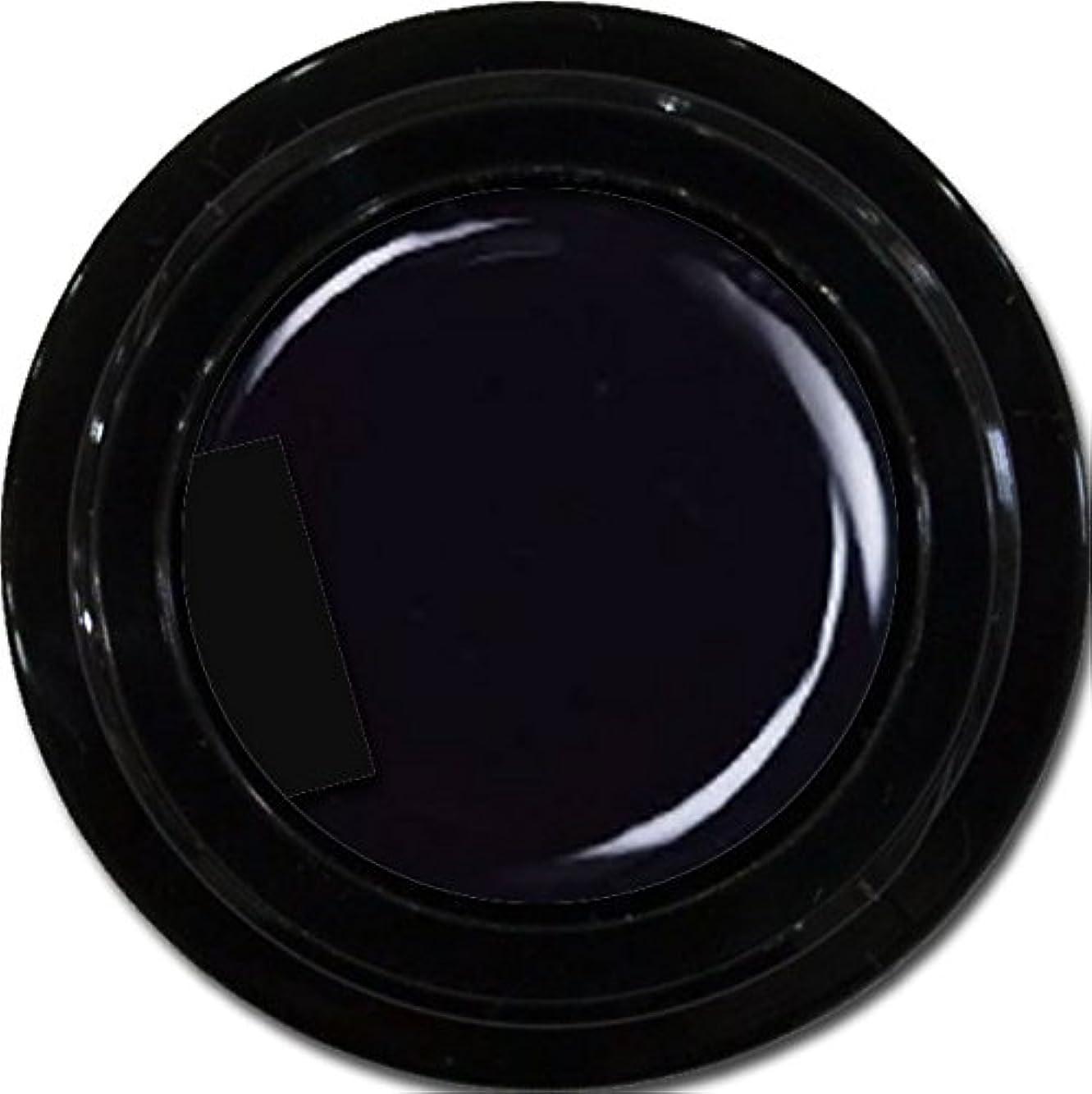 私たち自身エンゲージメントホイッスルカラージェル enchant color gel M901 Extreme Black 3g/マットカラージェル M901 エクストリームブラック 3グラム