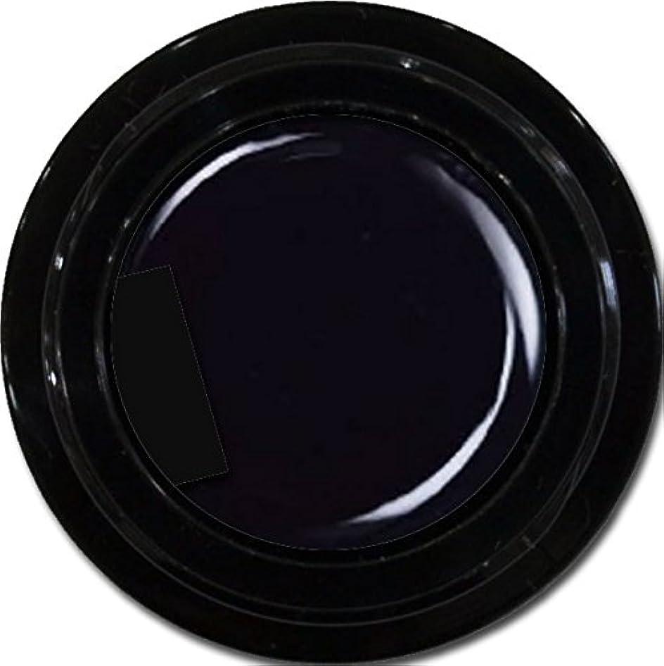 バラ色仲介者引き渡すカラージェル enchant color gel M901 Extreme Black 3g/マットカラージェル M901 エクストリームブラック 3グラム
