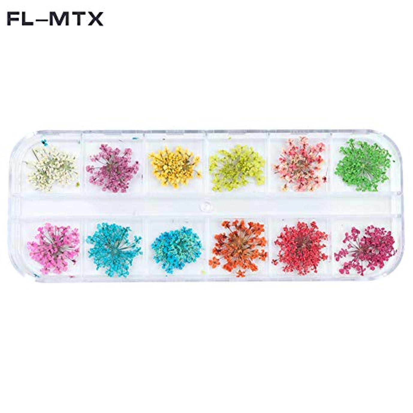 裁定蓮伴う1パックのネイルジュエリードライフラワーdiyクラフト(fl-mtx)の3dフラワーネイル装飾用ドライネイル用品の12色違い