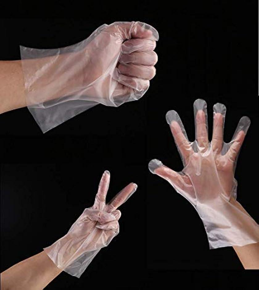 使い捨て手袋 極薄ビニール手袋 ポリグローブ ポリエチレン プラスティック手袋 透明 実用 衛生 極薄手袋 超薄型 調理に?お掃除に?毛染めに コックの手袋 ガーデニングカラーケア 洗車 食品衛生法適合(500枚セット)