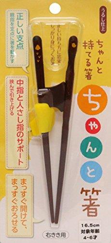 イシダ 矯正箸 ちゃんと箸 こども用 16.5cm 右利き