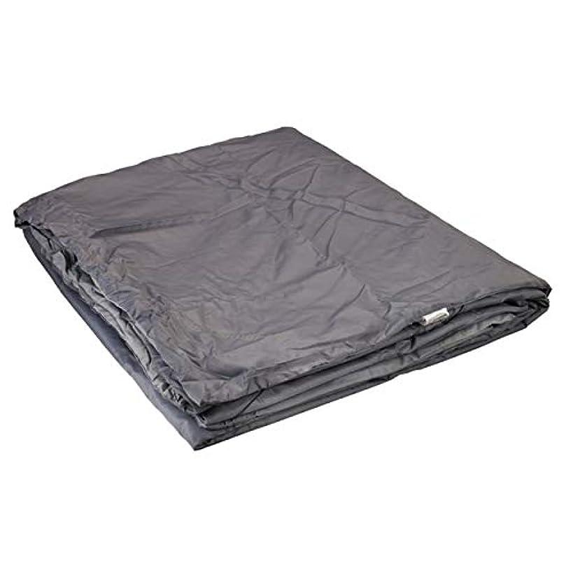 受信機まばたき審判Snugpak Travelpak Blanket XL Pebble Grey [並行輸入品]