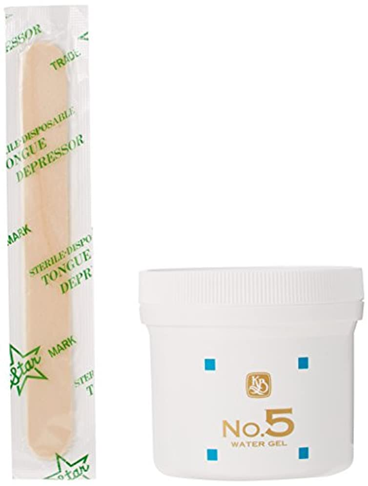 入場料実業家トーン顔を洗う水 No.5 ウォーターゲル 保湿パック 250g