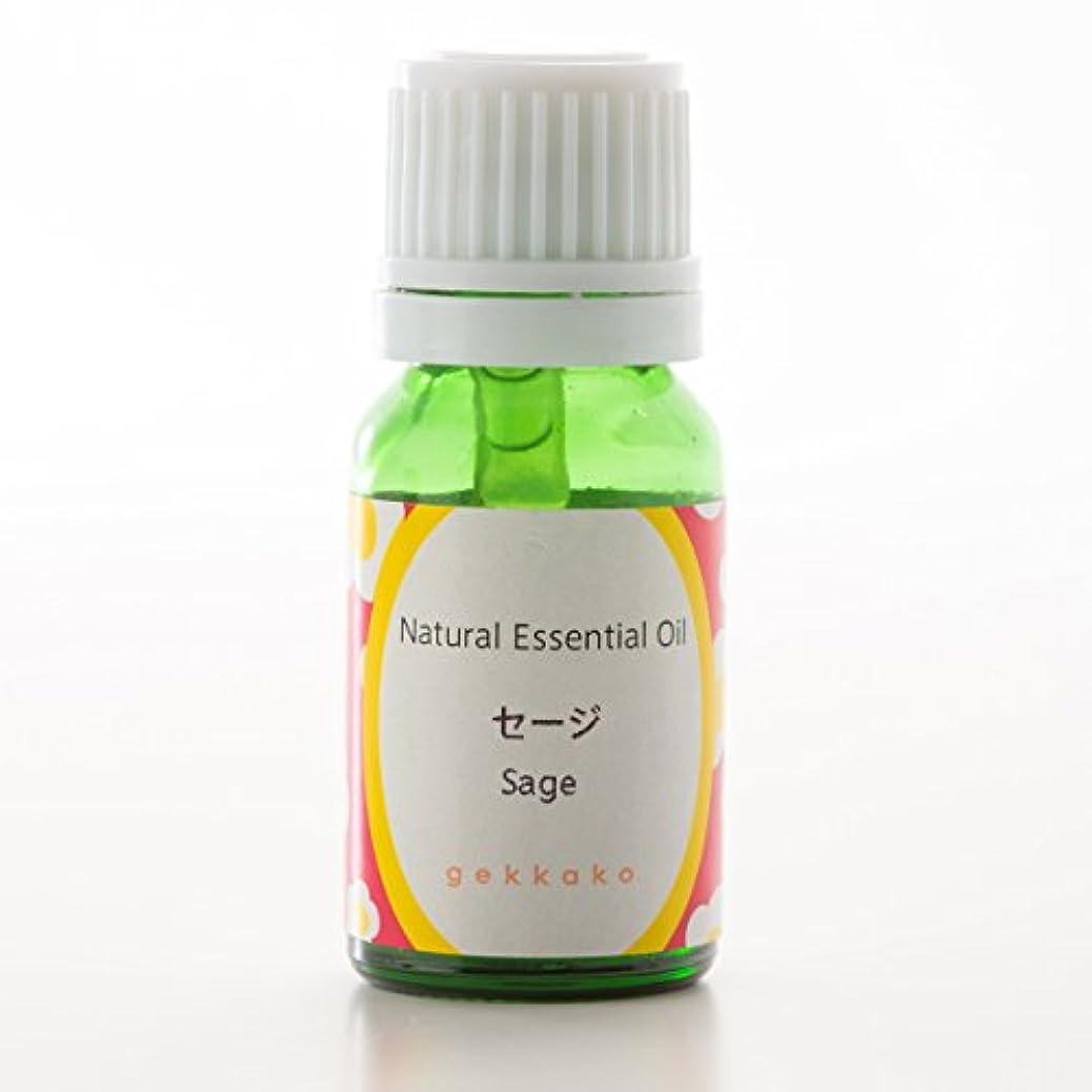 アレルギー性めんどり害虫<月下香>エッセンシャルオイル/アロマ/セージ【5ml】 (5ml)