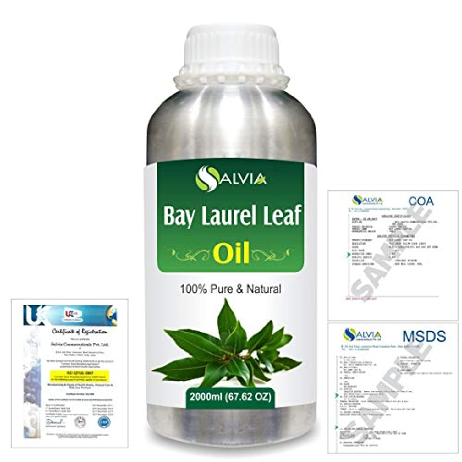 ラリーベルモント驚いた装置Bay Laurel Leaf (Laurus nobilis) 100% Natural Pure Essential Oil 2000ml/67 fl.oz.
