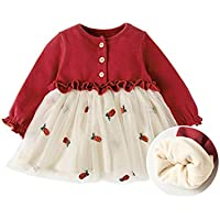 Fairy Baby Toddler Baby Girls Winter Fleece Outfit Ruffle Floral Fluffy Princess Dress