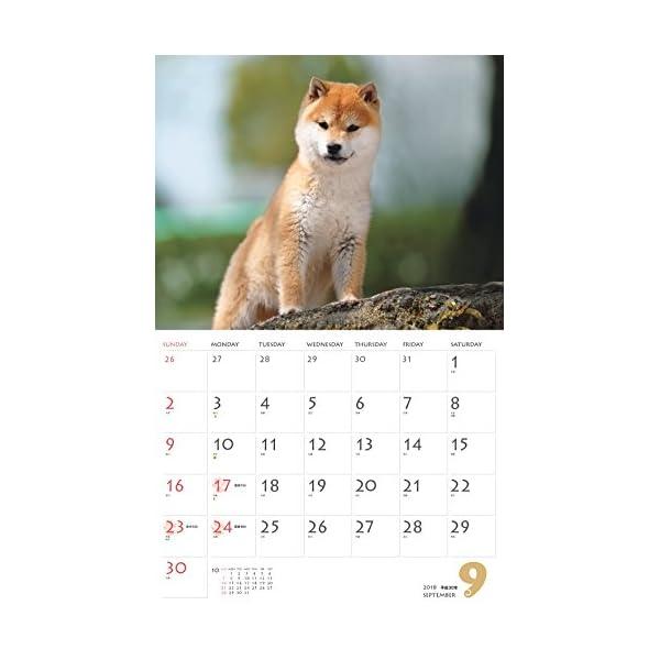 カレンダー2018 柴犬 (ヤマケイカレンダ...の紹介画像11
