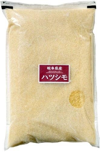 岐阜県 無洗米 匠の米ハツシモ 5kg 平成30年産