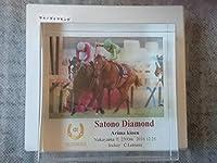 『アクリルオブジェ』サトノダイヤモンド有馬記念 外箱付き 生産終了