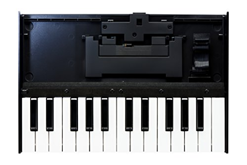 Roland(ローランド) Boutique K-25m キーボード・ユニット