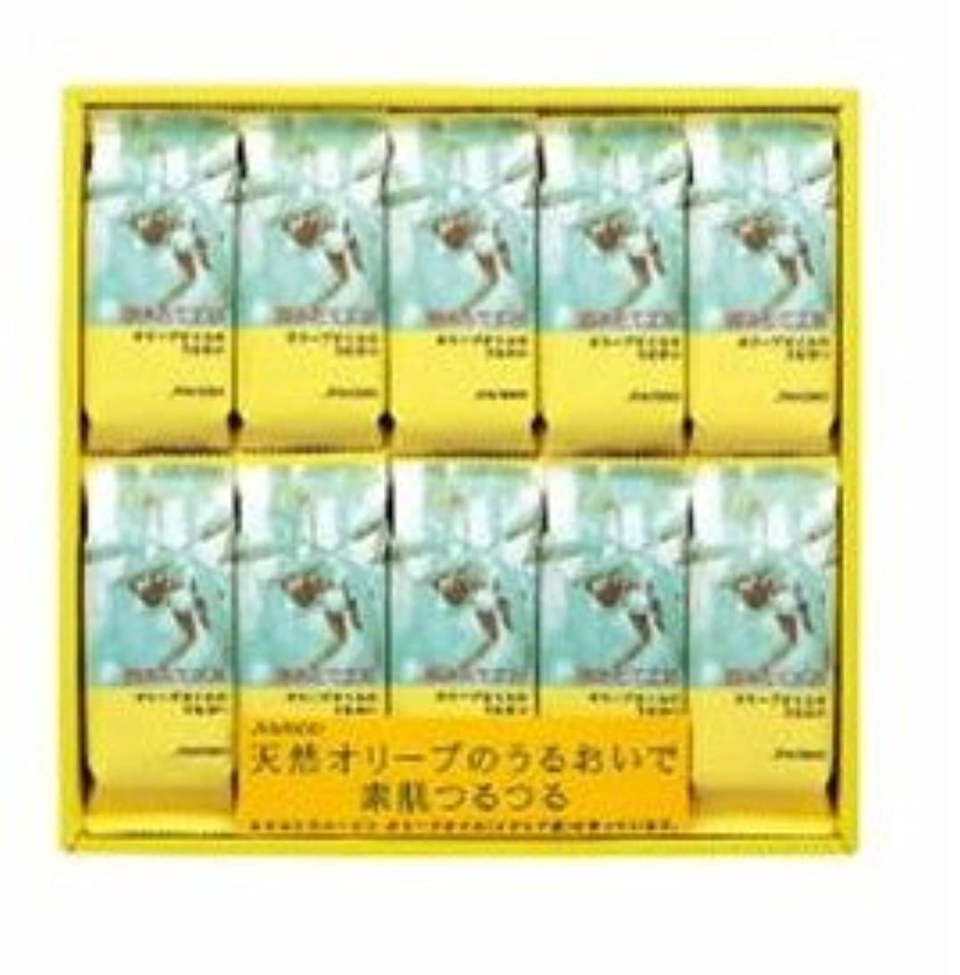 綺麗な微生物東部資生堂 資生堂 摘みたて工房(EX) N 10-20