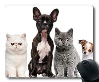 ゲーミングマウスパッド、ヒップスタードッグウェアカラーかわいい犬、正確な縫い合わせ、耐久性のあるマウスパッド