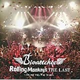 ROLLING MONKEY'S THE LAST ON OUR WAY,WAY TO GO [DVD]