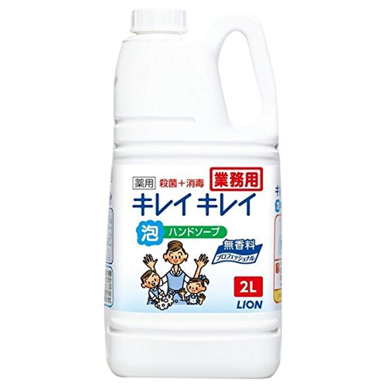 無傷ステンレスプレミアライオン キレイキレイ薬用泡ハンドソープ 無香料 2L×6本入