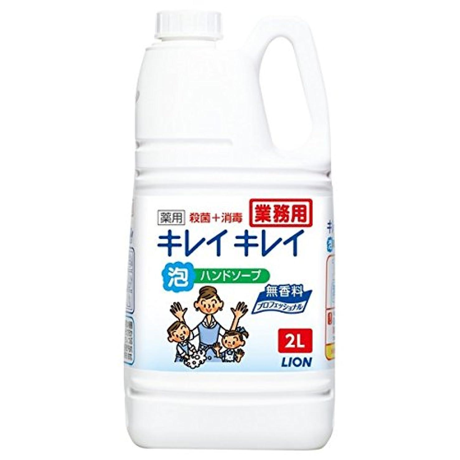 豊富な戻る締め切りライオン キレイキレイ薬用泡ハンドソープ 無香料 2L×6本入