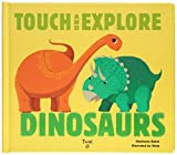 Dinosaurs: Touch and Explore 画像