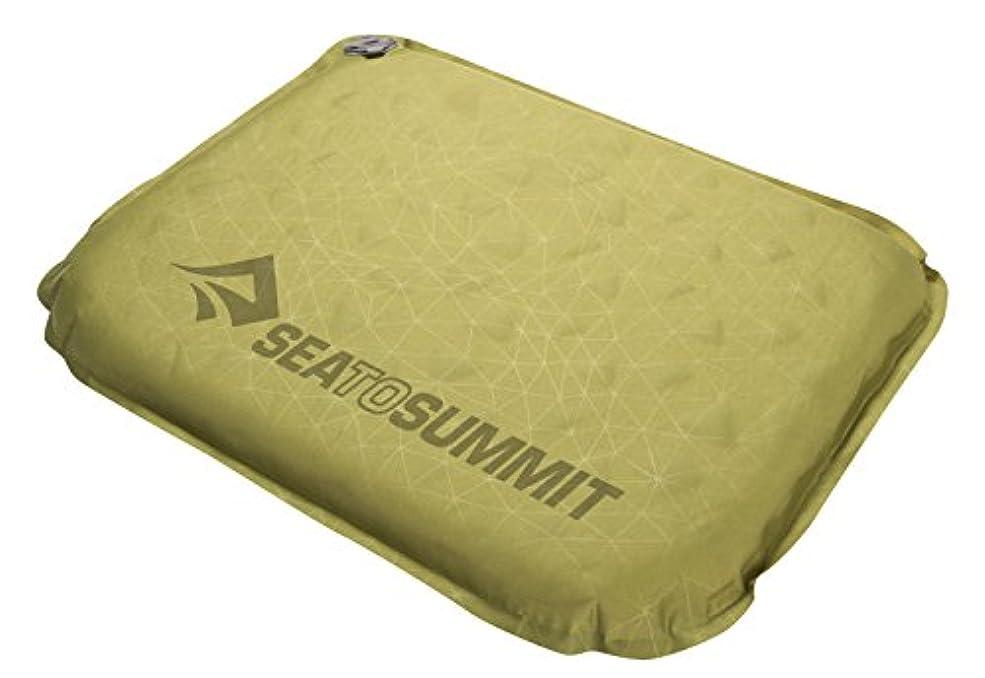 接触応用アクティブSEA TO SUMMIT(シートゥサミット) S.I.シート ST81192 オリーブ