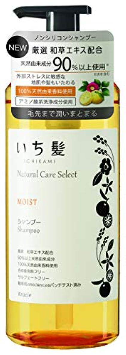 固体ソフィーフラスコいち髪ナチュラルケアセレクト モイスト(毛先まで潤いまとまる)シャンプーポンプ480mL シトラスフローラルの香り