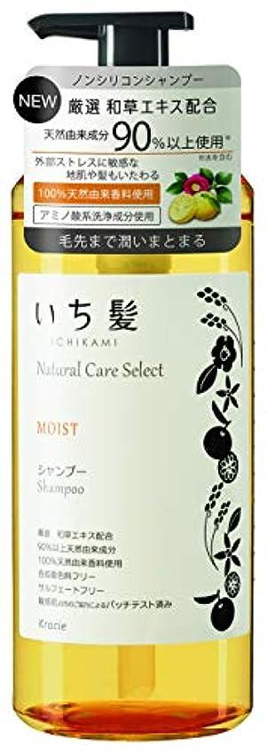 いち髪ナチュラルケアセレクト モイスト(毛先まで潤いまとまる)シャンプーポンプ480mL シトラスフローラルの香り