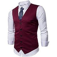 Winoto Mens Business Suit Vest Slim Fit Formal Fashion Layered Vest Waistcoat Dress Vest Necktie