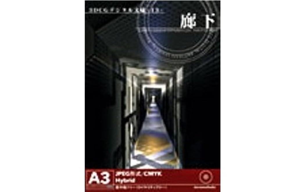 眠る宿題アルカトラズ島3DCGデジタル文様 13 「廊下」