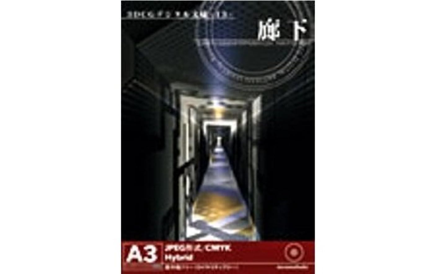 殉教者厚さ予想外3DCGデジタル文様 13 「廊下」