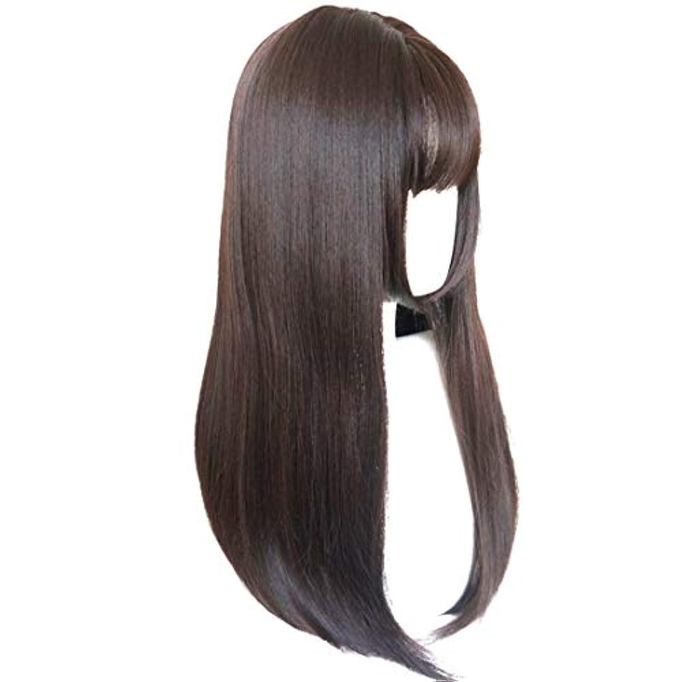 誓う勤勉な圧縮されたKerwinner かつら完全なかつら女性のための耐熱性耐熱性でかつらストレートロング人工毛