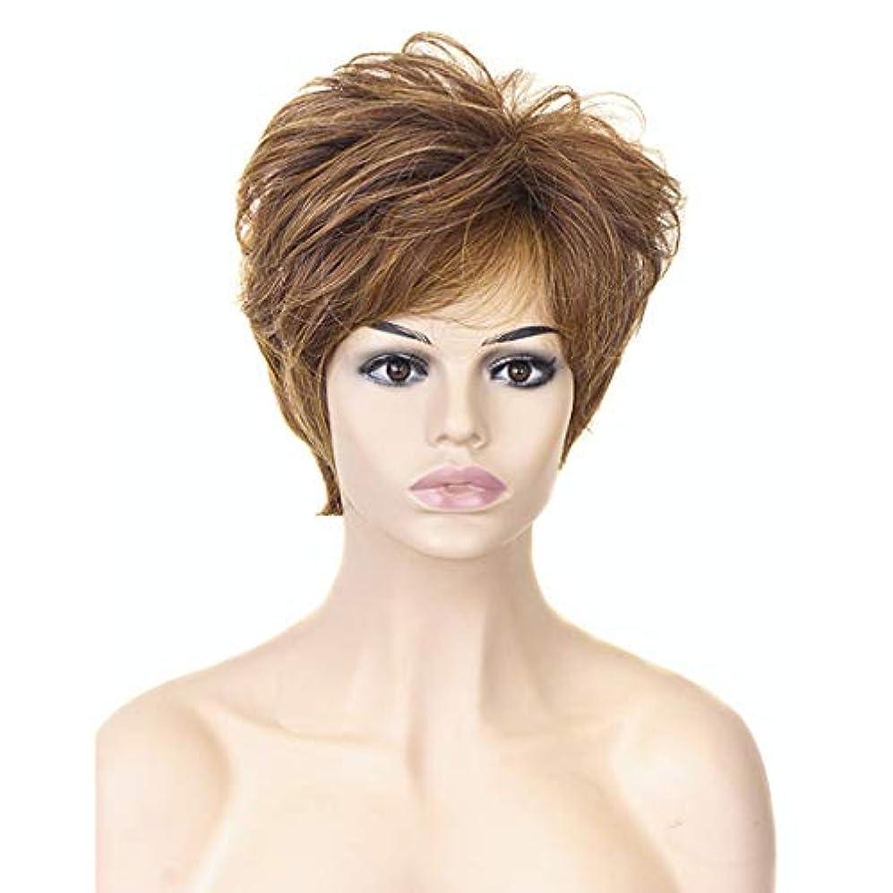 疼痛先ボアYOUQIU 女性の耐熱ウィッグナチュラルヘアウィッグのためのブロンド10