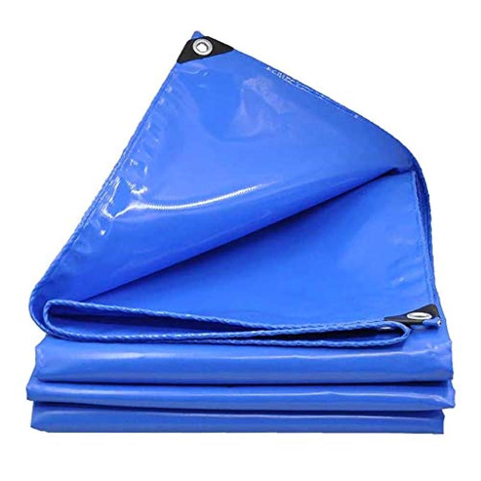 置き場開拓者例示するターポリン 防水 ミシン目付き アウトドア 老化防止 日焼け止め レインプルーフ 両面PVC素材 グランドシートカバー植物布 厚さ0.45mm
