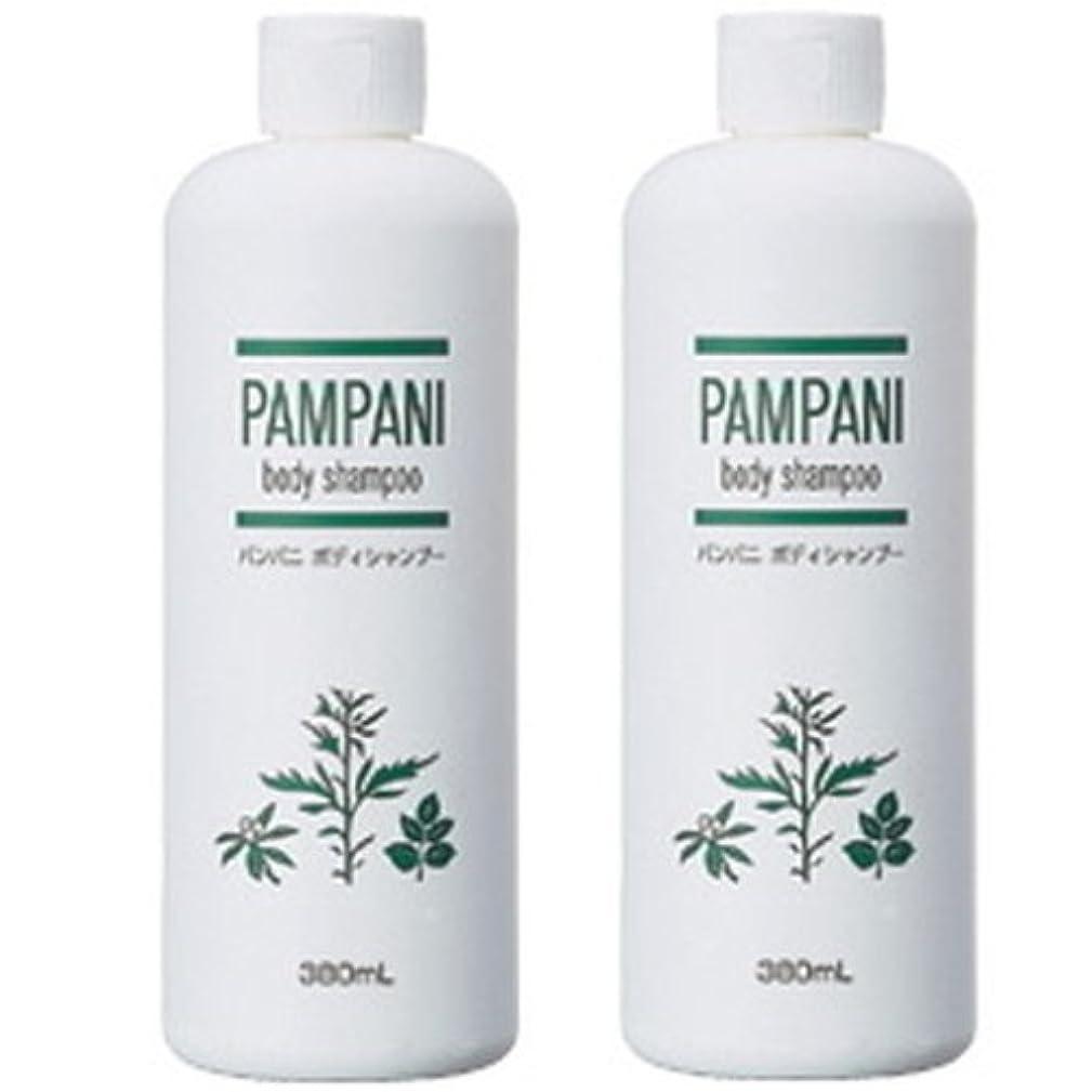 肌寒い浸食地下室パンパニ(PAMPANI) ボディシャンプー  380ml×2本組