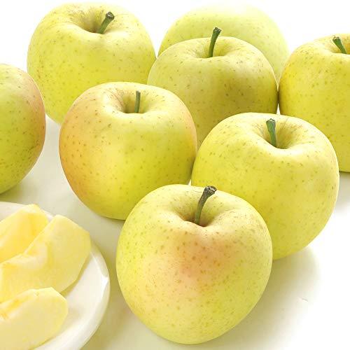 国華園 青森産 星の金貨 5kg1箱 りんご