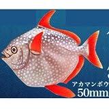 ネイチャーテクニカラーMONO PLUS 深海生物 ボールチェーン&マグネット2 [4.アカマンボウ: ボールチェーン](単品)