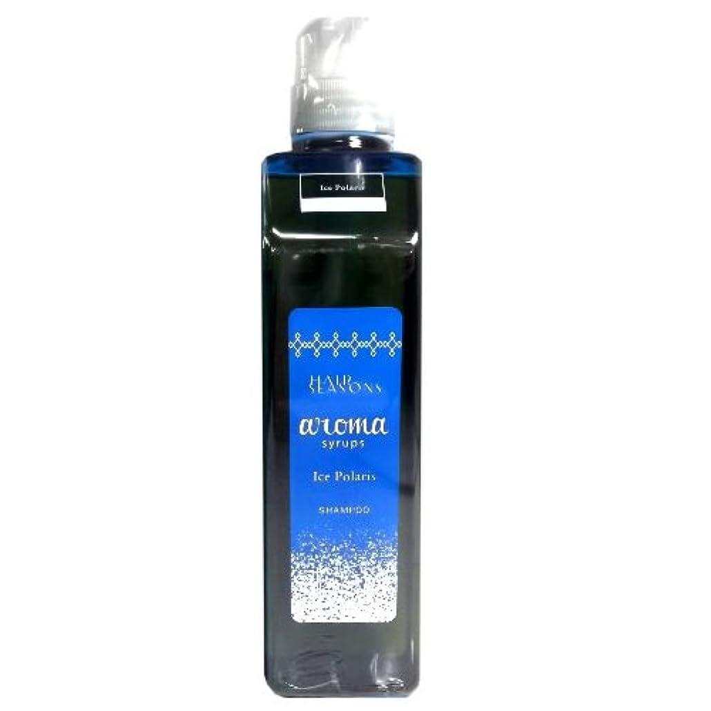 一時停止羽できるデミ ヘアシーズンズ アロマシロップス アイスポラリス トリートメント 550g DEMI HAIR SEASONS aroma syrups