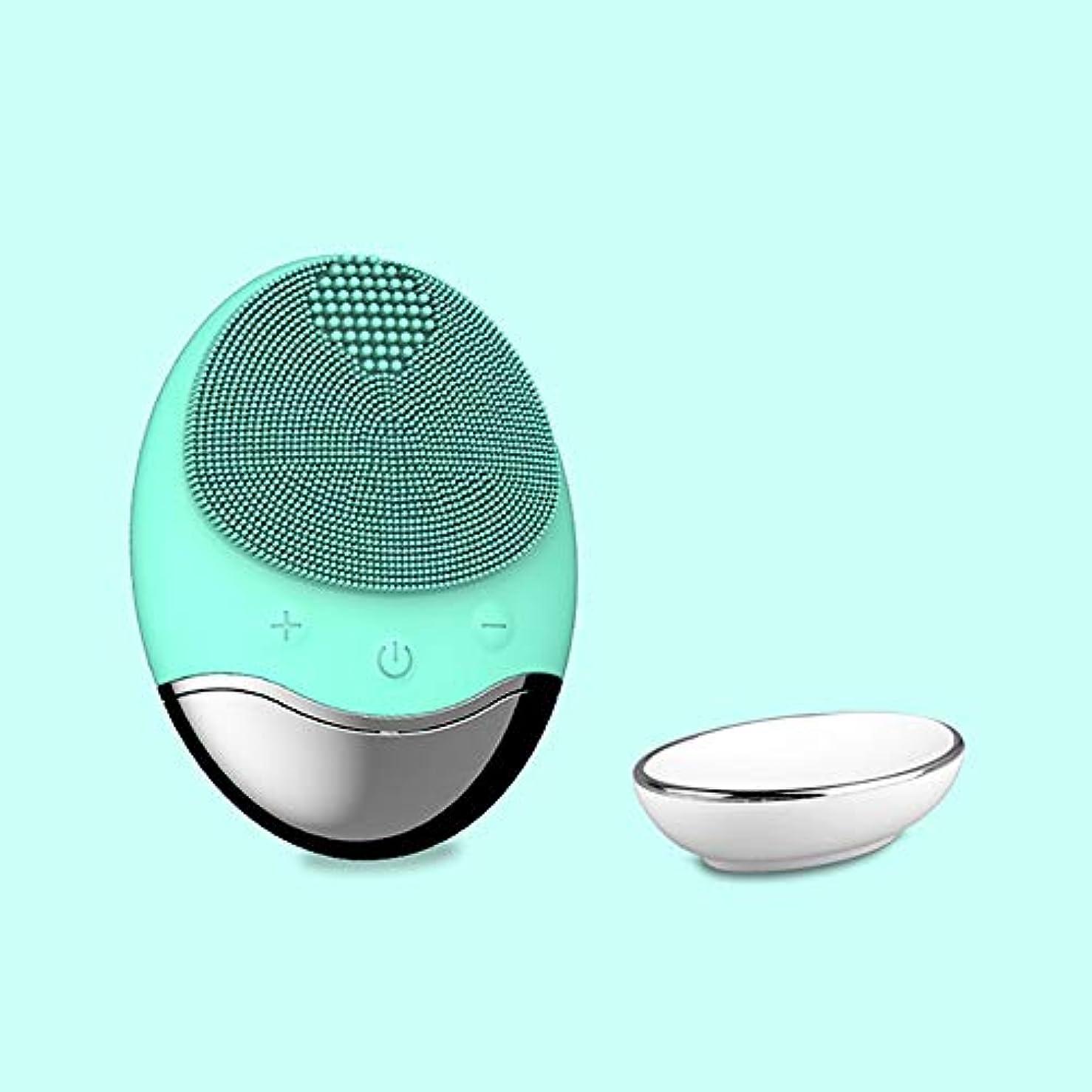 夕暮れ怠な空洞ZXF 新しいアップグレードワイヤレス充電電気家庭用竹炭シリコーン防水超音波洗浄毛穴洗浄器具洗浄器具輸入器具 滑らかである (色 : Green)