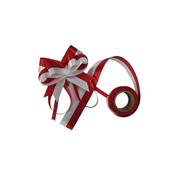 カネコ テープカット用紅白リボンの紹介画像3