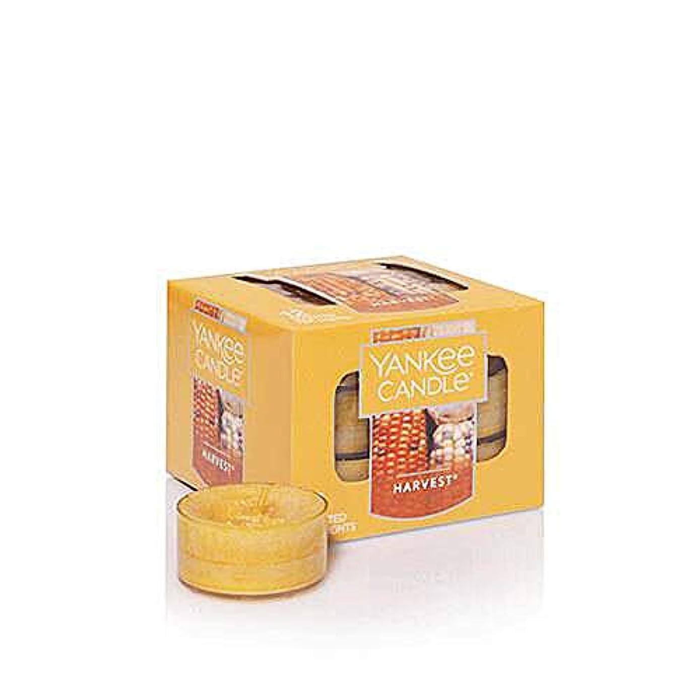 概して標高貫通Yankee Candle Harvest, Food & Spice香り Tea Light Candles オレンジ 141505-YC 1