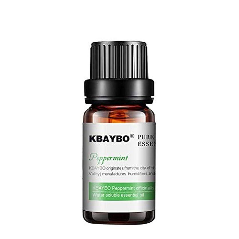 鉛バンアグネスグレイアロマテラピー 10ml ミント ラベンダー エッセンシャルオイル ナチュラル アロマ 植物 フレグランスランプ 加湿器 水溶性 香り